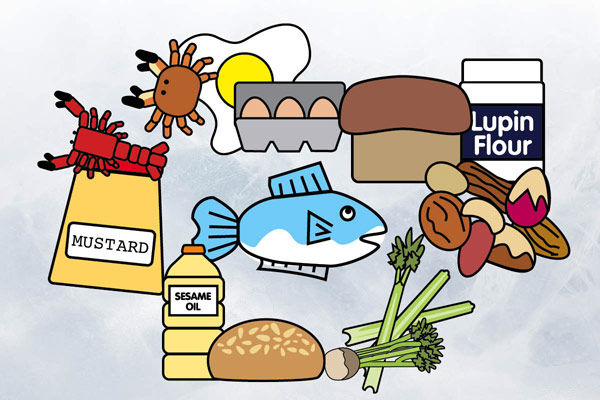 Handy downloads from the food standards agency allergens are you compliant forumfinder Image collections